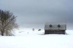 Vieillir sous la pluie hivernale (photo prise à Neuville)